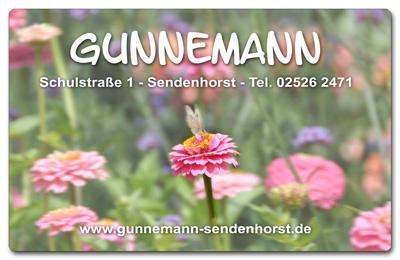 Bunus-Gunnemann