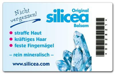hinten_silicea